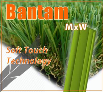 SGS-Turf-Bantam