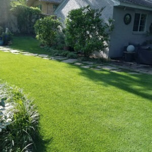 SGS-Synthetic-turf