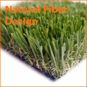 LOKI-landscape-grass