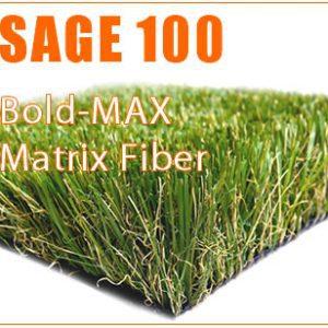 SAGE-100